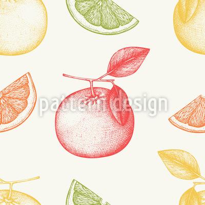 Grapefruit Vektor Design