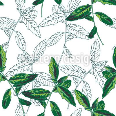 Basilikumblätter Nahtloses Muster
