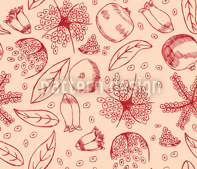 Pomegranate Dream Vector Design