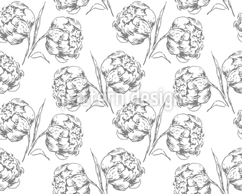 Pfingstrosen Pflücken Vektor Muster