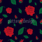 Rose Blossoms And Buds Vector Design